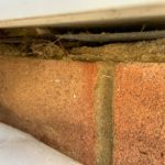 damp proof course services
